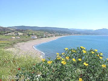Vatera at South Lesvos